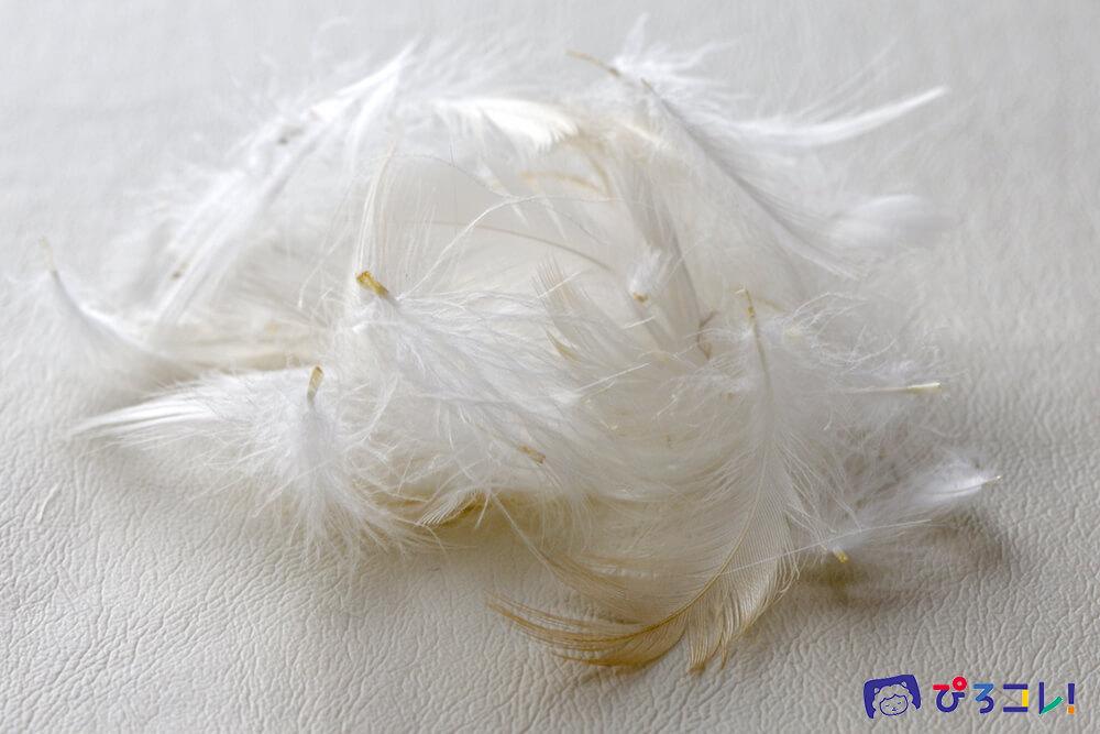 羽根・フェザー/枕の素材
